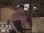 Programa de Rodrigo Hilbert gera polêmica após morte de ovelha