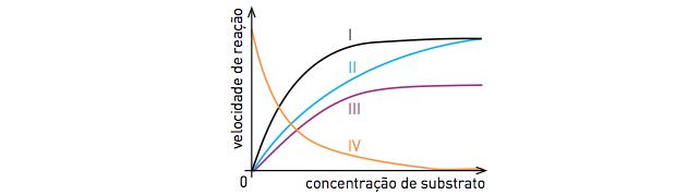 Gráfico da reação (Foto: Reprodução/UERJ)