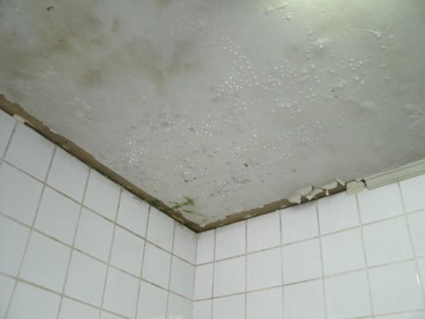 Sala médico do CAPS em Piracicaba com goteiras e infiltrações  (Foto: Simão Bernardo Sabadin da Costa/Arquivo Pessoal)