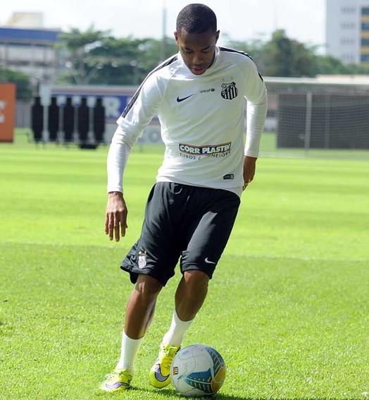 na torcida (Ivan Storti/Santos FC)