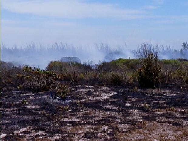 Área faz parte do Parque Estadual Costa do Sol (Foto: Reprodução / Inter TV)