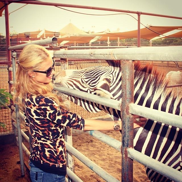 Paris Hilton com zebra (Foto: Reprodução/Instagram)