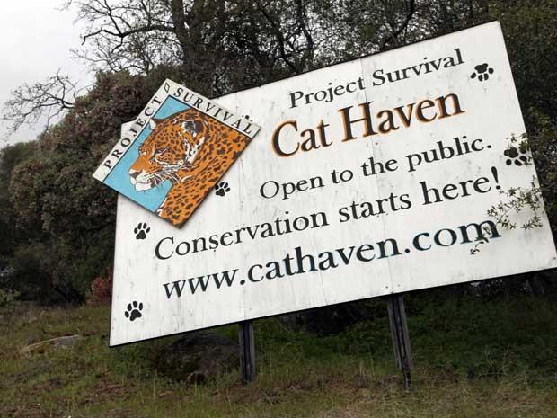 Painel na entrada do centro Cat Haven, na Califórnia. (Foto: Gosia Wozniacka / AP Photo)