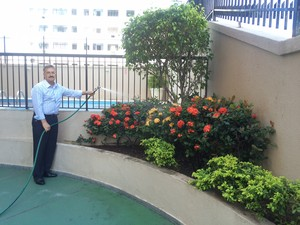 Água de reservatório é usada para regar plantas (Foto: Matheus Rodrigues/ G1)