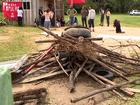Grupo de famílias ocupa terreno às margens da SC-401 em Florianópolis