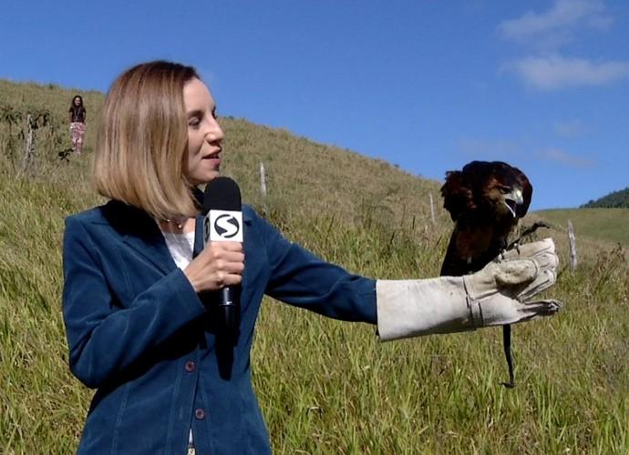 Teresa Freitas conheceu um gavião que é o xodó de um casal de biólogos (Foto: Rio Sul Revista)