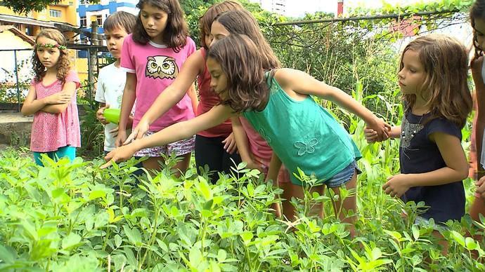 Nutricionista enumera benefícios da alimentação saudável para as crianças (Foto: TV Bahia)