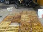 Homem é preso fazendo transporte ilegal de mil canários-da-terra