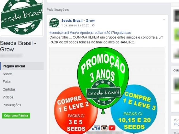 Página na internet negociava venda de sementes de maconha em Goiânia, Goiás (Foto: Reprodução/Facebook)
