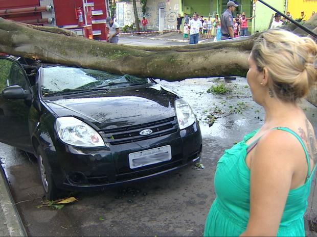 Árvore atingiu veículo no Jardim Colonial em São José dos Campos. Segundo a proprietária, carro não tinha seguro. (Foto: Reprodução/TV Vanguarda)