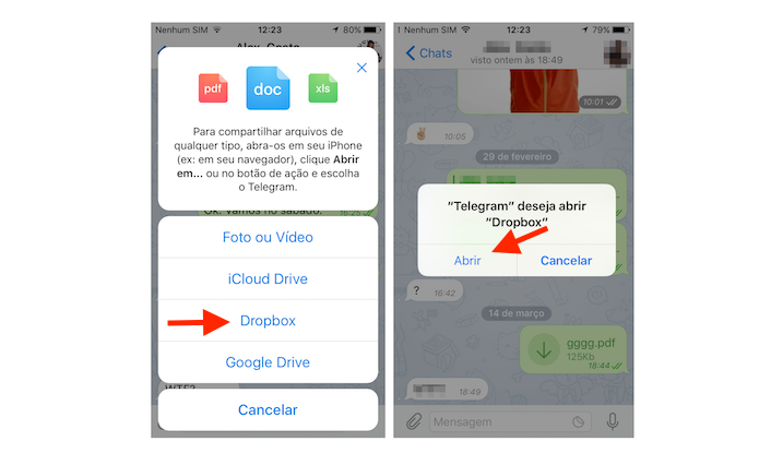 Acessando o Dropbox através do Telegram para iPhone (Foto: Reprodução/Marvin Costa)