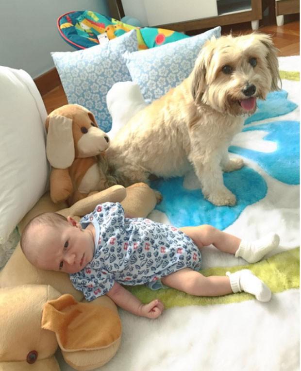 Gael, o filho de Maíra Charken, com a cachorrinha Amelia (Foto: Reprodução Instagram)