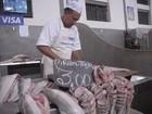 Preço do pescado aumentou em 2015, diz pesquisa do Dieese