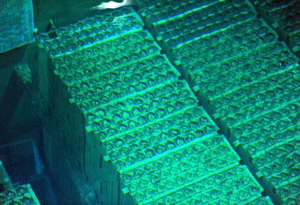 Imagem divulgada nesta quarta-feira mostra elementos combustíveis já utilizados e que estão armazenados na piscina do reator 4 do complexo nuclear de Fukushima (Foto: Kyodo/Reuters)