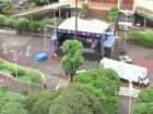 Rio Preto e Olímpia irão receber a festa do Ano Novo Show