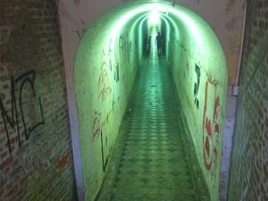 Túnel para pedrestres têm pichação e lâmpadas queimadas (Foto: Roberta Steganha/ G1)