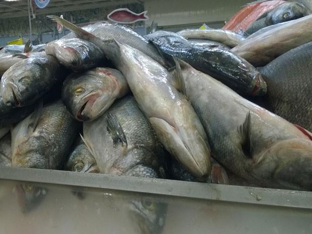 Peixes para a Semana Santa (Foto: Lilian Quaino/G1)