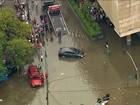 Forte chuva deixa SP em estado de atenção, alaga ruas e derruba árvores