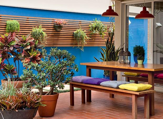 Suculenta-parede-azul-paisagista-susana-bandeira-maria-flor-paisagismo (Foto: Edu Castello/Editora Globo)