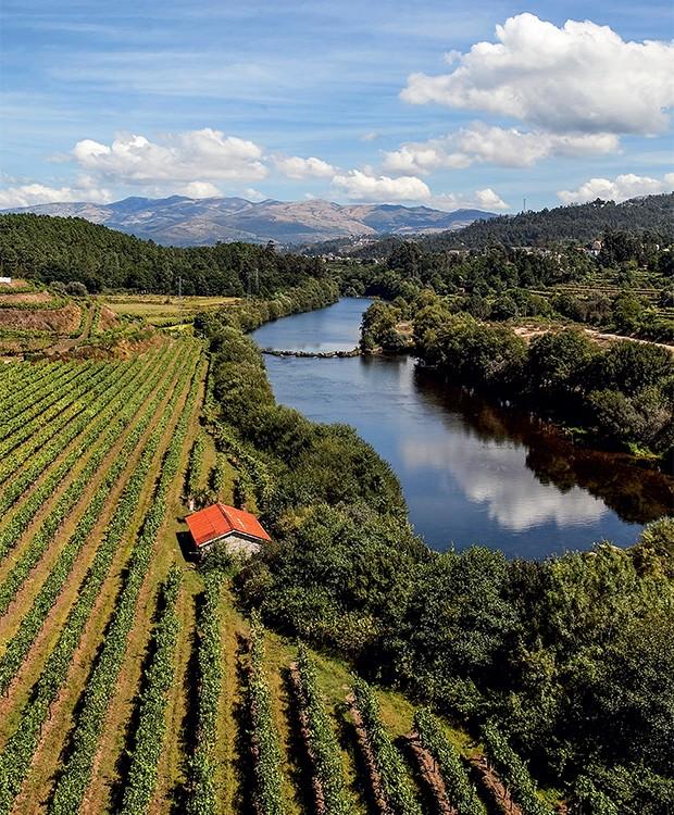 Vale do Rio Lima, próximo à vila de Ponte de Lima, ao norte de Portugal: a região produz vinhos verdes tintos, brancos, espumantes e monovarietais (Foto: Editora Globo)