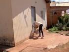 Campo Grande decreta estado de alerta contra o Aedes aegypti