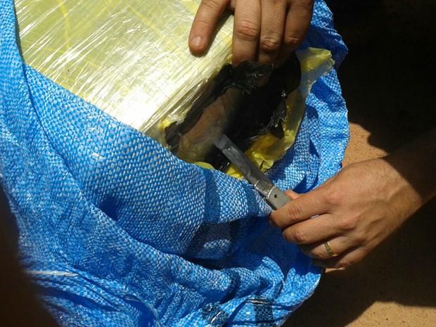 Carregamento de droga foi encontrado pela polícia dentro de avião  (Foto: Divulgação/Polícia Civil de Mato Grosso)