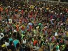 Homem é ferido por adolescente na Bahia durante desfile de trio e morre