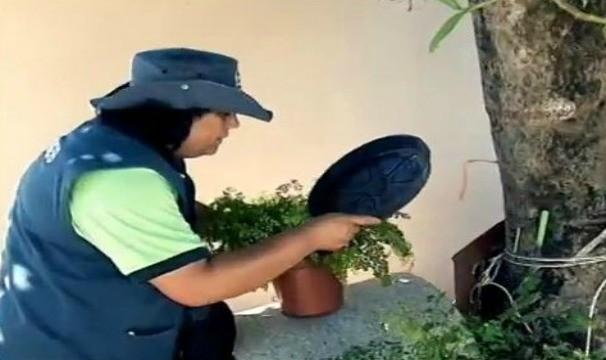 Agentes Comunitários de Saúde orientam sobre como se prevenir do mosquito da dengue (Foto: Reprodução / TV TEM)