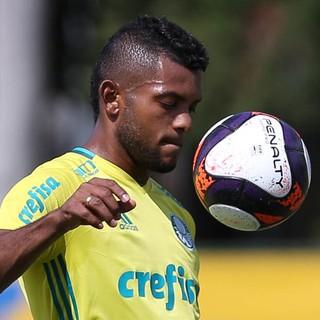 Borja Palmeiras (Foto: Cesar Greco/Ag Palmeiras/Divulgação)
