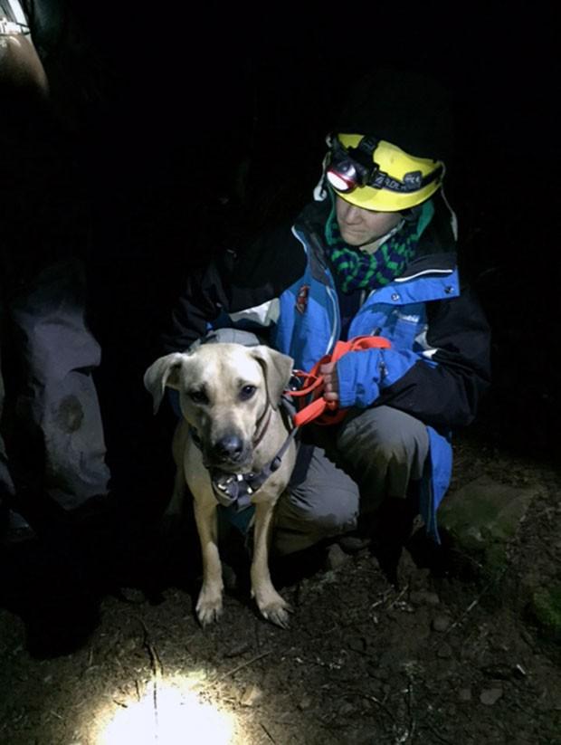 Cadela da raça Labrador sobreviveu apósa queda de 45 metros de penhasco no estado do Oregon (Foto:  Emily Amsler/Oregon Humane Society/AP)