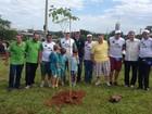 TEM Mais Verde reúne moradores de Votuporanga para plantio de mudas