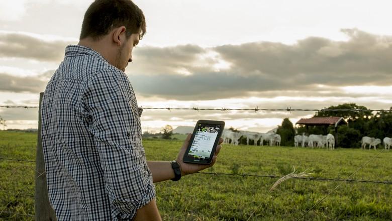 aplicativo_biogas_simulator_tecnologia_suinos (Foto: Divulgação )