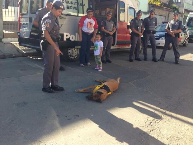Cachorro da Polícia Militar fez sucesso durante a ação (Foto: Carolina Paes/TV Diário)