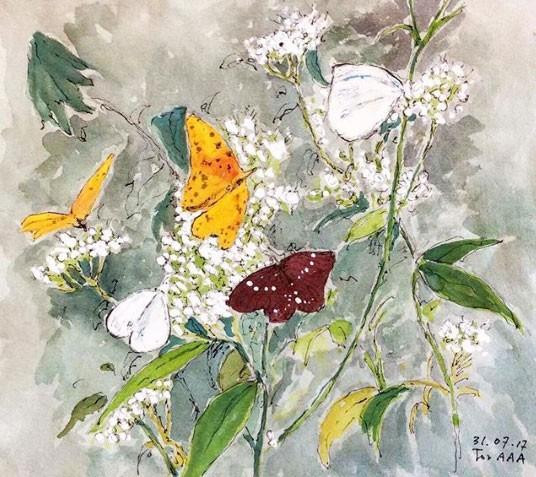 """""""As borboletas se juntaram ali numa pequena flor silvestre. Parece que tem muito mel mesmo sendo pequena. Allan, conte quantas são! """" (Foto: Reprodução - Instagram)"""