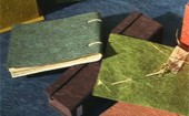 Materiais reciclados ajudam a faturar (Reprodução)