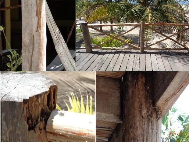 Vistoria encontrou cupim em pousada onde turistas de GO caíram de sacada (Foto: Divulgação/Crea)