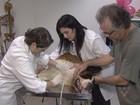Estudantes fazem campanha de coleta de sangue para animais