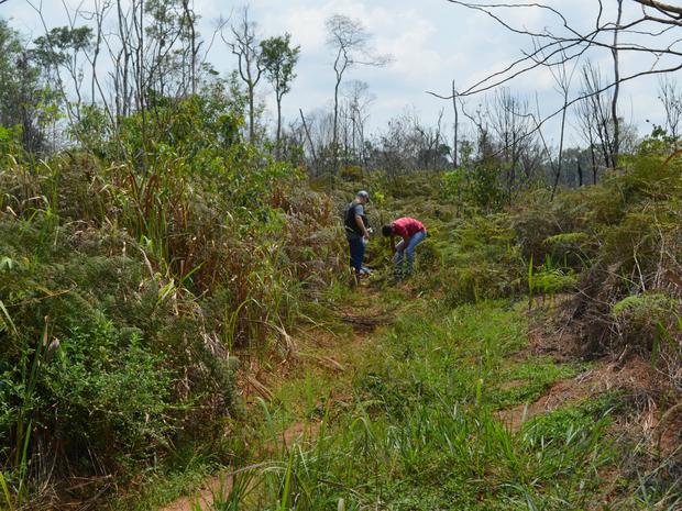 Perícia esteve no local para realizar os trabalhos que vão auxiliar nas investigações (Foto: Eliete Marques/G1)