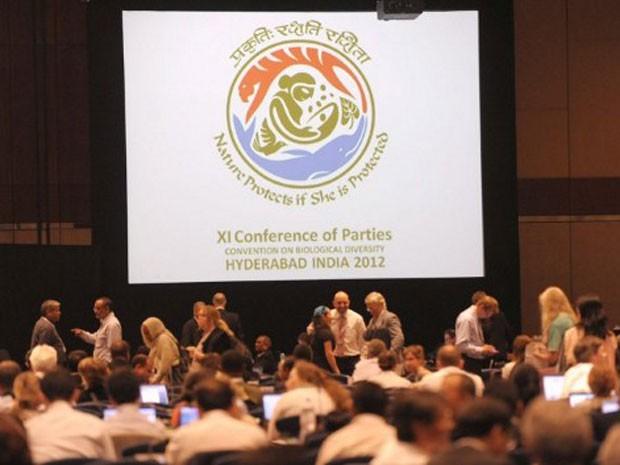 Desde o dia 8, 14.400 delegados de 184 países estão reunidos em Hyderabad, na Índia, para negociar o documento final da COP 11 da Biodiversidade (Foto: Noah Seelam/AFP)