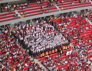 torcida organizada santos estádio mané garrincha (Foto: Thiago Dias)