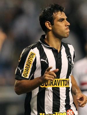 Herrera gol Botafogo (Foto: Satiro Sodré / AGIF)