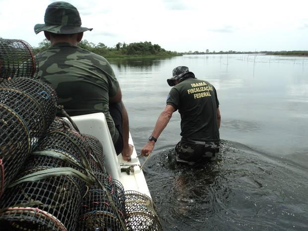 Fiscais do Ibama percorrem área de pesca no rio são Francisco em busca de corvos ilegais (Foto: Arquivo Ibama)