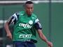 Fabricio rescinde com o Cruzeiro e fica perto de assinar com o Palmeiras