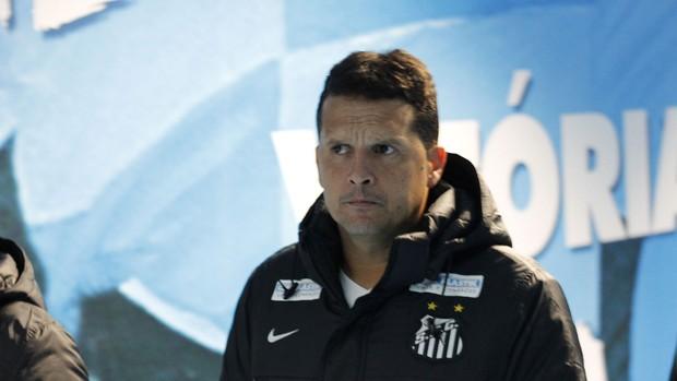 Claudinei Oliveira, treinador do Santos (Foto: Diego Guichard)