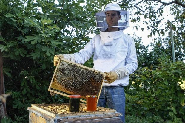 Favier mostra a diferença de cor entre o mel verde e o mel comum. (Foto: Reuters/Emmanuel Foudrot)