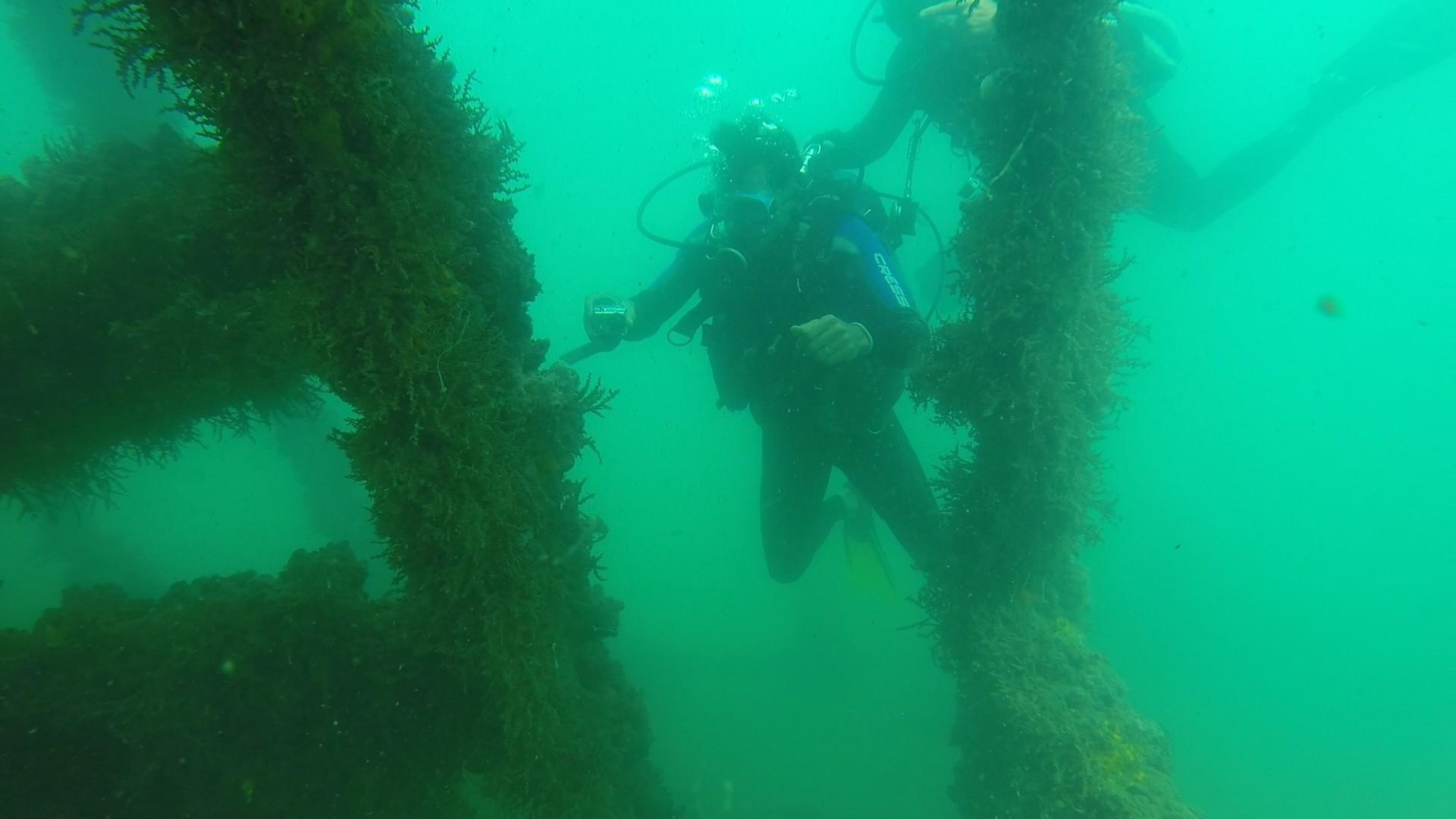 Jackson Costa mergulha para conhecer sítio arqueológico subaquático (Foto: Divulgação)