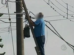 Funcionário de empresa de telefonia foi flagrado sem EPI (Foto: Reprodução / TV TEM)