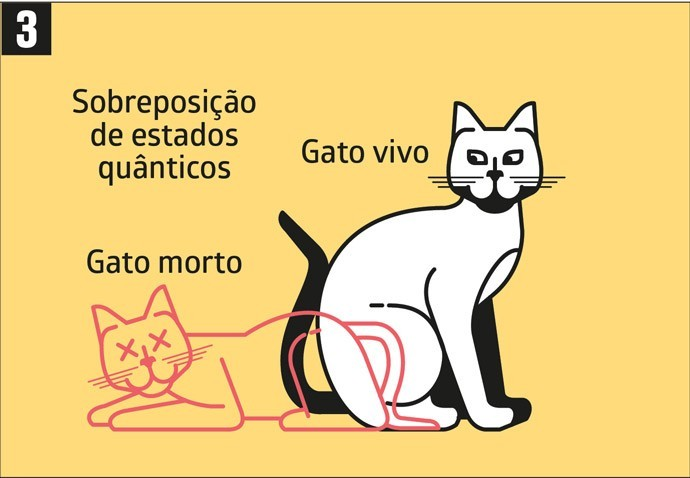Gato de Schrödinger: entenda o que é o experimento
