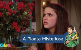 A Planta Misteriosa