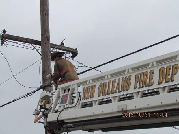 Felino foi resgatado pelo corpo de bombeiros da cidade (Foto: Reprodução/Facebook/The Louisiana SPCA)